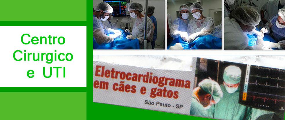 centro_cirrurgico_veterinaria_img