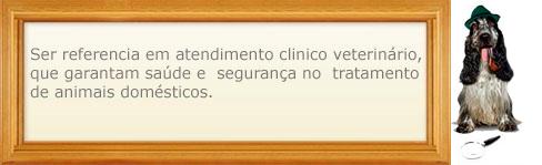 visão clínica veterinária